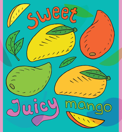 Sweet juicy mango. Summer exotic food. Beautiful hand drawn illustration of fruits Reklamní fotografie - 115888154