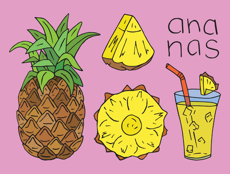 Sweet Pineapple juice. Summer exotic food. Beautiful hand drawn illustration of fruits Reklamní fotografie - 115888155