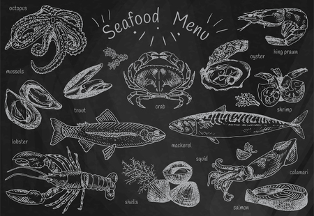 seafood menu, octopus, mussels, lobster, trout, shells, mackerel, crab, oyster, king prawns, shrimps, squid, salmon, calamari on chalkboard background Illustration