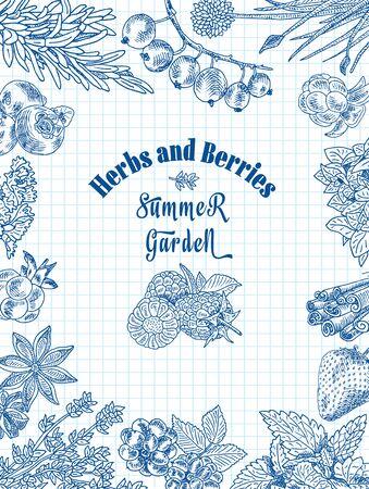 herbs and berries summer garden, dewberry, blueberry, raspberry, strawberry, blueberry, cloud berry, herbs, basil, chives, coriander, oregano, rosemary, thyme