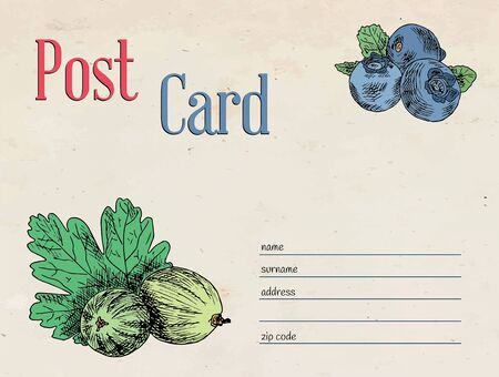 berries garden postcard. Template design of envelope and illustration