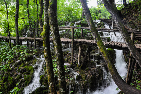 Wooden Hiking Trails in Plitvice Lakes National Park take you through lush green forest and over pristine lakes and waterfalls