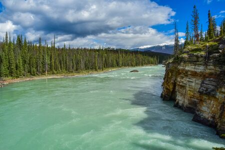 Below the Athabasca Falls in Banff Jasper National Park