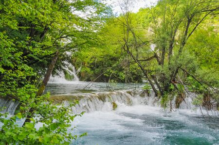 Beautiful Plitvice Lakes National Park in Croatia during the summer. Waterfalls and lakes complete this lush wonderland.