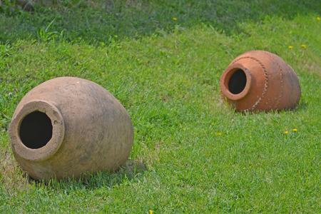 cay: Cay jug on the green grass, Georgia