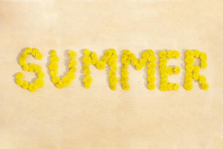 word summer from dandelions on wood surface background copyspace Standard-Bild