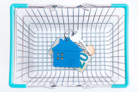 Figure of a blue mini house with keys and money in a basket for purchases on a white background