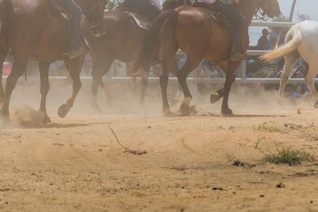 hag: Horses in gallop