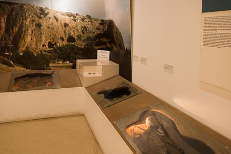 findings: Haifa Zoo, Israel