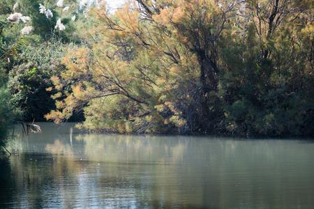 ein: Ein Afek Nature Reserve