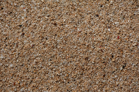 multiplicity: Seaside sand that with close-up view turns out to be a coral debris processed by the ocean, formed into tiny balls. Together with the broken shells it creates the conceptual depiction of plurality, multiplicity and complexity. Uluwatu beach, Bali, Indones