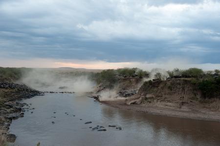 gnu migration on the mara river