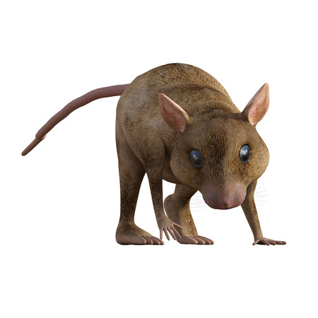 Cute cartoon house mouse isolated on white, 3d render. Standard-Bild - 98683836
