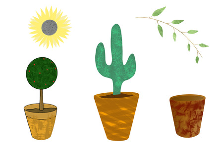 Set of hand drawn plants isolated on white.