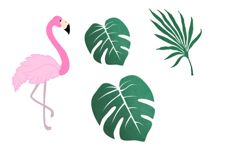 Pink flamingo and tropical leaves isolated on white, hand drawn illustration.