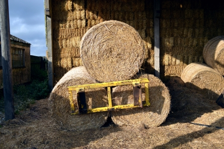 Hay bale lifter