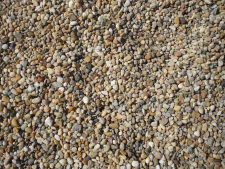many tiny holes found in pebble beach photo