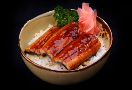 eel: Grilled eel with sauce on rice in Bowl