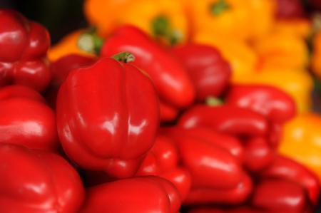 peper: Bell peper,north Thailand,sweet,cheap