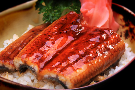 expensive food: Japanese eel grill on rice is unagidon very expensive food
