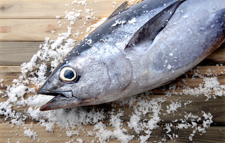 tunny: fresh bluefin tuna from market wit salt on wooden photo in sunlight Stock Photo