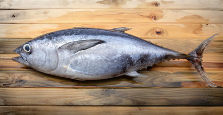 atun rojo: fresh bluefin tuna from market on wooden photo in sunlight
