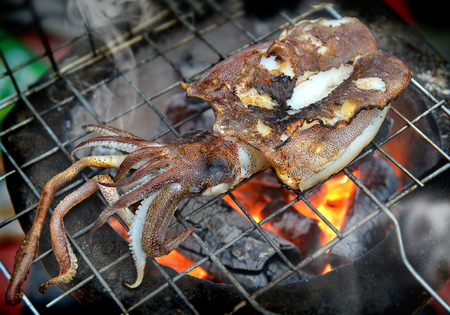 fishery: Fresh soft cuttle fish from fishery market in Thailand grill on the charcoal fire photo in outdoor cloudy lighting.