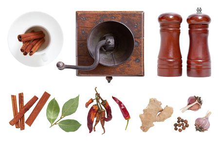 seasonings: Spices and seasonings for food. The mill and salt shaker isolated on white background.