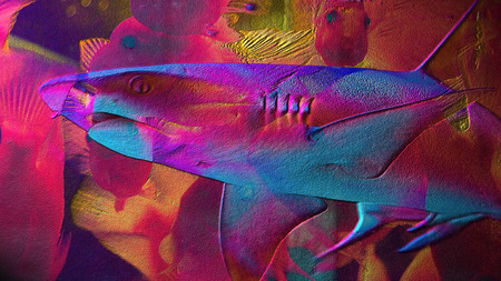 imitate: Multicolor background with a shark imitate painting on plaster Stock Photo