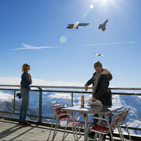 Two girls feed the birds on the viewing platform in the Swiss Alps