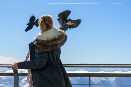 The girl feeds the birds out of the hand against the background of mountain scenery