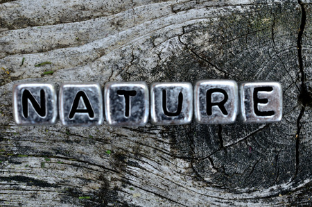 cube word natur on wooden table Stock Photo