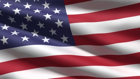 us government: USA flag background