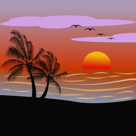 Sunsetsunrise on a beach with palms vector illustration