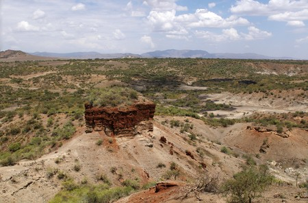 The Olduvai Gorge also known as cradle of mankind