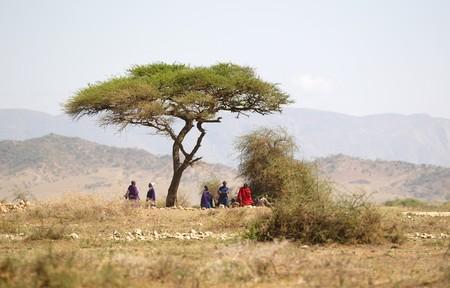 Masai - native people in african savannah