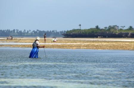 ebb: Black kobieta looking for stworów morza na ebb, Zanzibar.