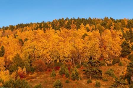 Autumn in Listvyanka - urban-type settlement on Lake Baikal
