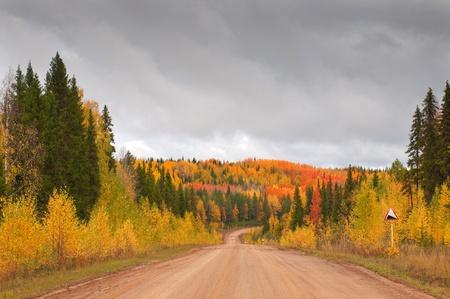 Wild mountain road in deep taiga forest, Komi region, Russia.