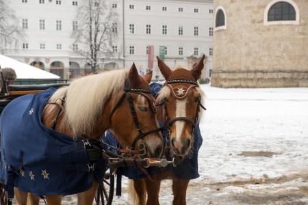 Horse carriage on Salzburg streets, Austria Stock Photo - 18671879