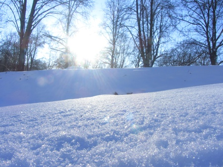 cold day: Sunny cold day