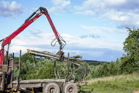 Unloading a tree with a manipulator. Forest felling concept Stok Fotoğraf