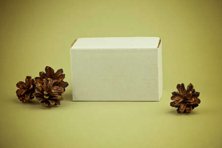 White small paper box on a gray-olive background and fir cones around