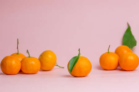 Bright orange tangerines are scattered on a soft pink background