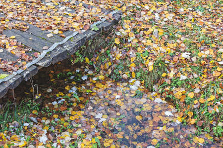 Old wooden bridge and wet autumn leaves below. Mood of sadness and autumn depression