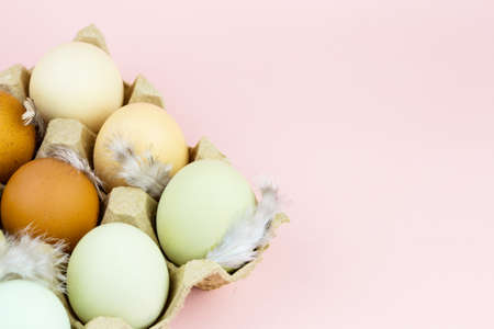 Close up view of raw multicolored chicken eggs in ovum