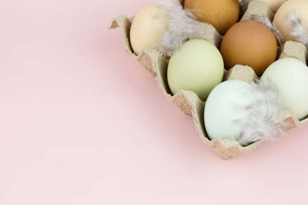 Close up view of raw multicolored chicken eggs with feathers in ovum