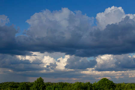 Summer high sky and trees below. Blue sky with white clouds and treetops. Stock Photo