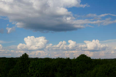 Blue sky with white clouds . Beautiful landscape of sky and trees