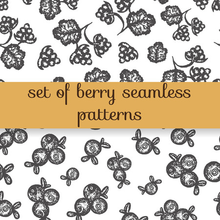 Vector seamless pattern of hand drawn black and white north berries. Repeating background with blueberry, cranberry and cloudberry